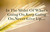 15 Quotes About Never Giving Up