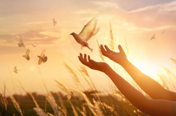 15 Bible Verses That Will Encourage You To Forgive